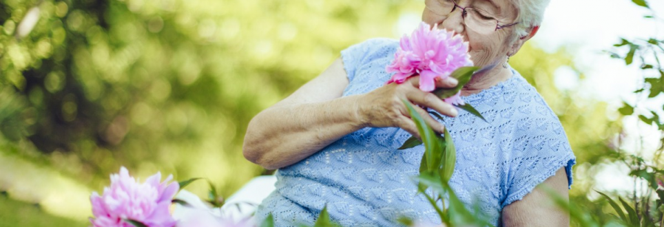 Stimulating the sense of smell could treat Alzheimer's