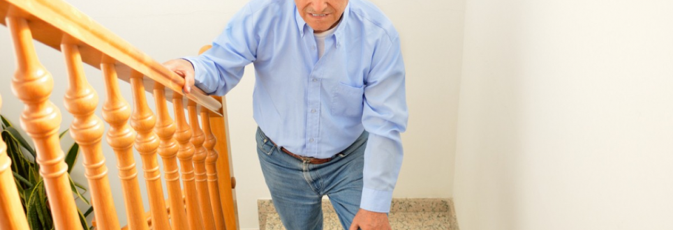 Medical waste could be used to create new hips for osteoarthritis sufferers