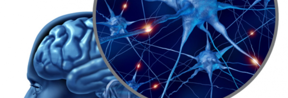 Frontotemporal dementia study receives funding boost
