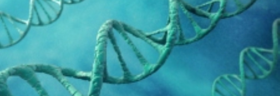 Gene sequencing project 'could lead to Parkinson's treatments'