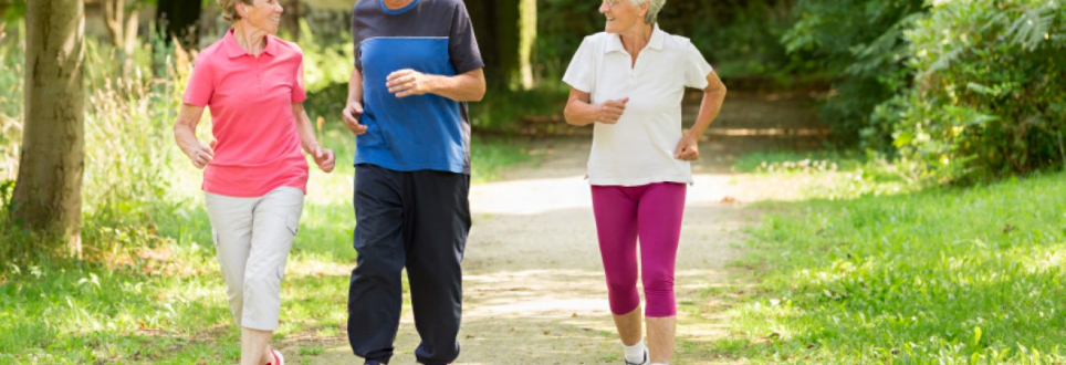 New study highlights importance of activity
