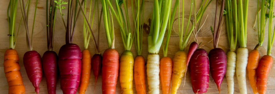 Carrots, kale and sweet potatoes could prevent dementia in older adults