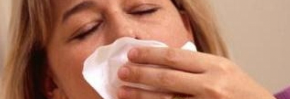 Swine flu symptoms are 'easily comparable to regular flu'