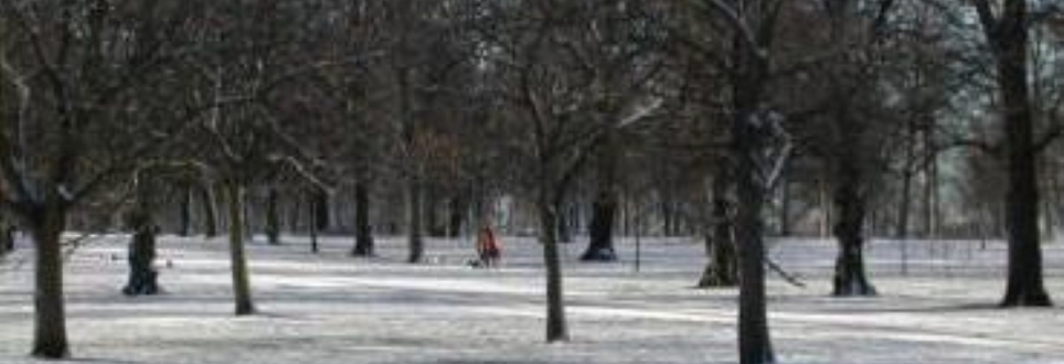 Arthritis patients must stay active during winter