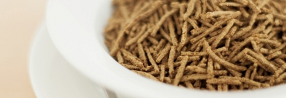Fibre reduces cancer risk