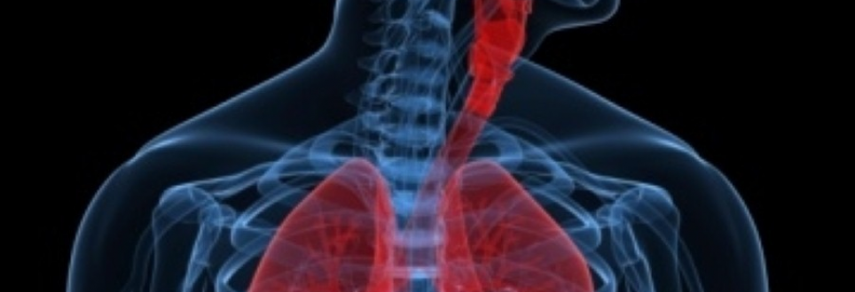 Mannitol improves lung function
