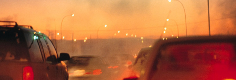 Does air pollution lead to cognitive decline in women?