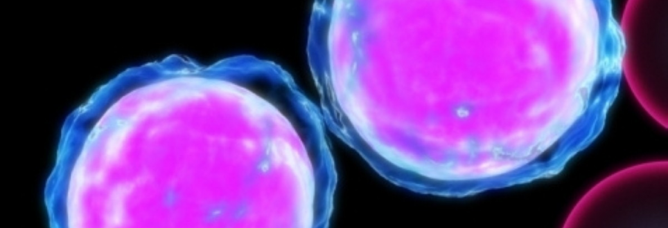Cancer-causing gene mutations are 'simpler than thought'