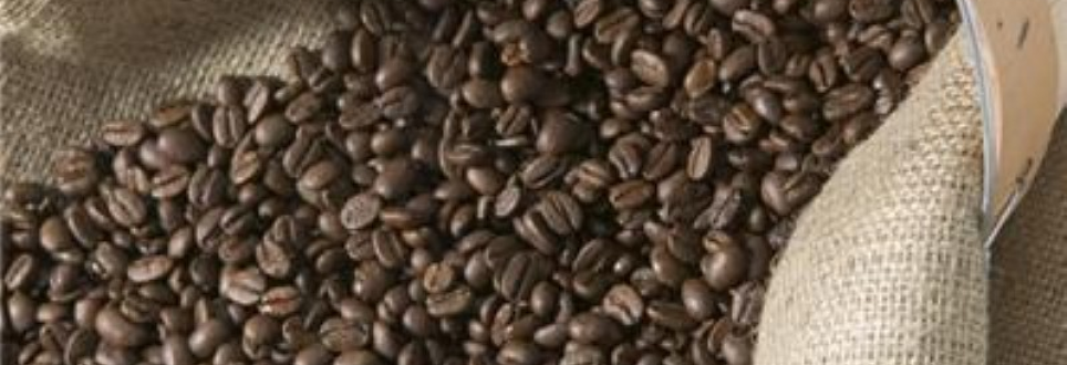 Could coffee help treat Parkinson's?