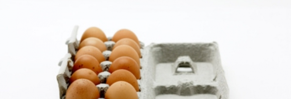 Egg yolks may increase coronary risk 'as much as cigarettes'