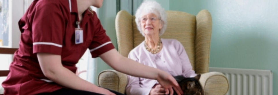 Dementia care home figures revealed