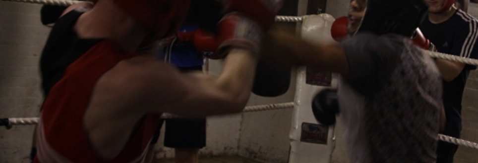 Neuroscientist calls for ban on boxing to stop brain damage