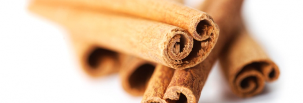 Cinnamon thought to help to slow down Parkinson's disease