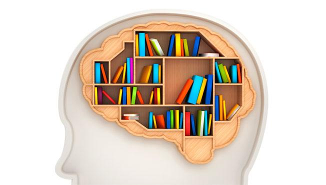 Image of brain filled with books