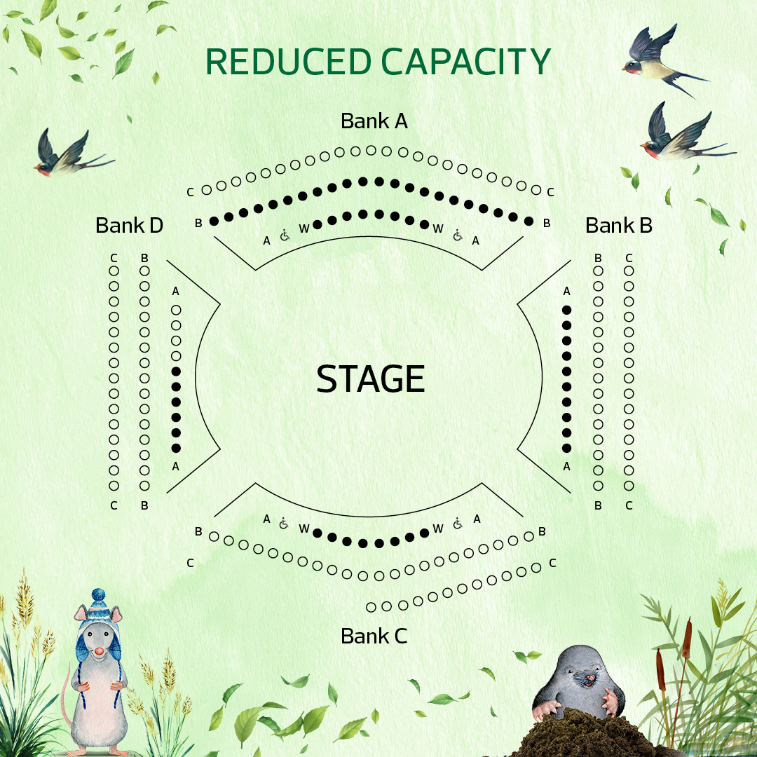 Reduced Capacity Seating Plan for Wind in the Willows