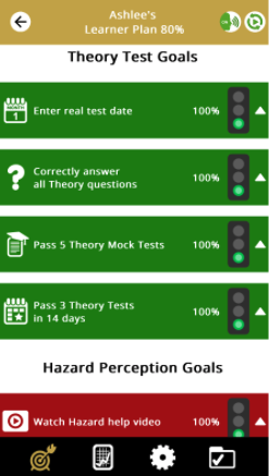 Driving Test Success Learner Plan