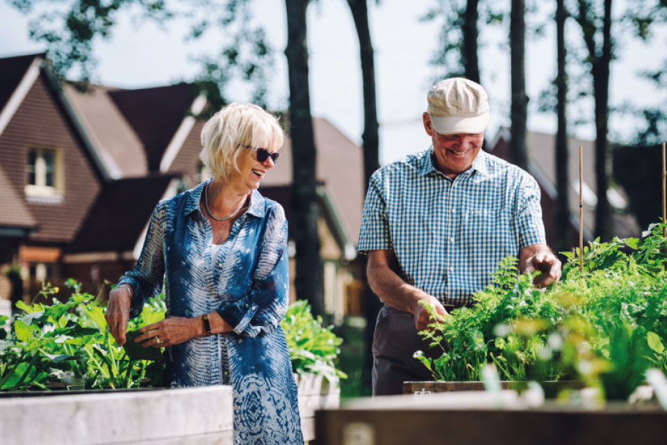 Inspired Villages, Finding Therapy in Your Garden