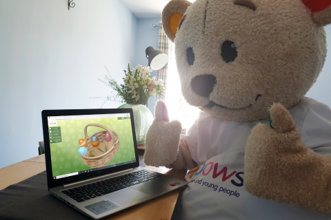 Bow Bear sat thumbs up with a laptop