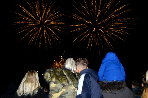 A group of people watching fireworks