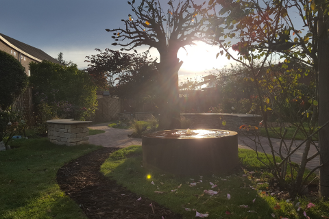 The sun shining on the Remembrance Garden