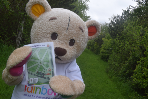 Bow Bear mascot holding a map and standing in a field